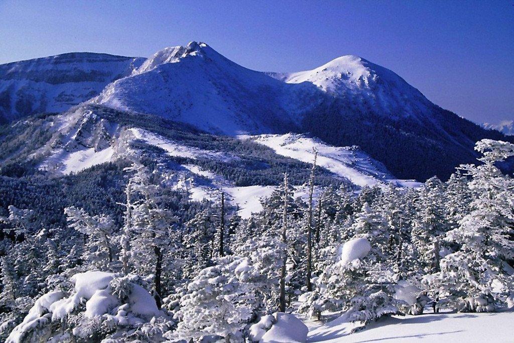 Winter in Japan.
