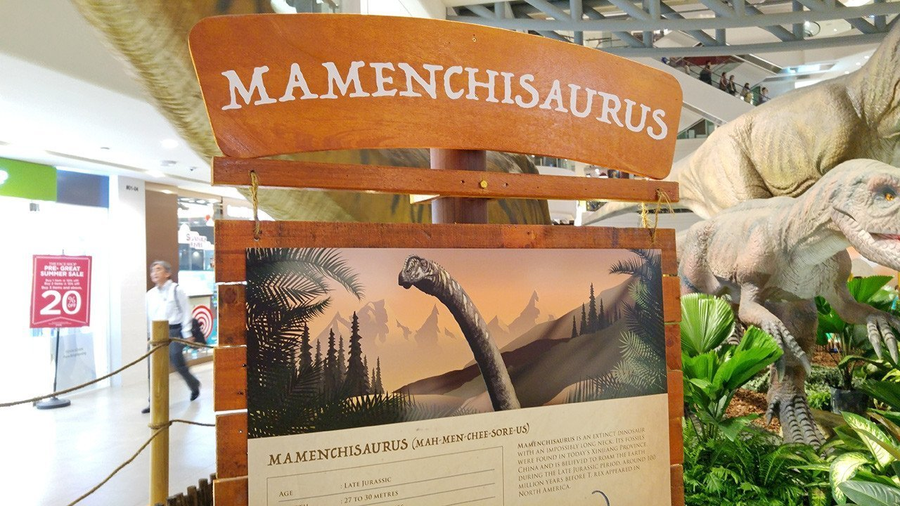 Rawr! Dinosaurs Unearthed Mamenchisaurus Panel.