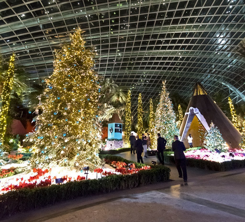 Poinsettia Wishes, Flower Dome December 2017