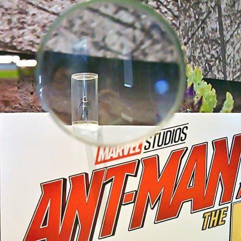 Ant-Man at Marvel Studios: Ten Years of Heroes Exhibition.