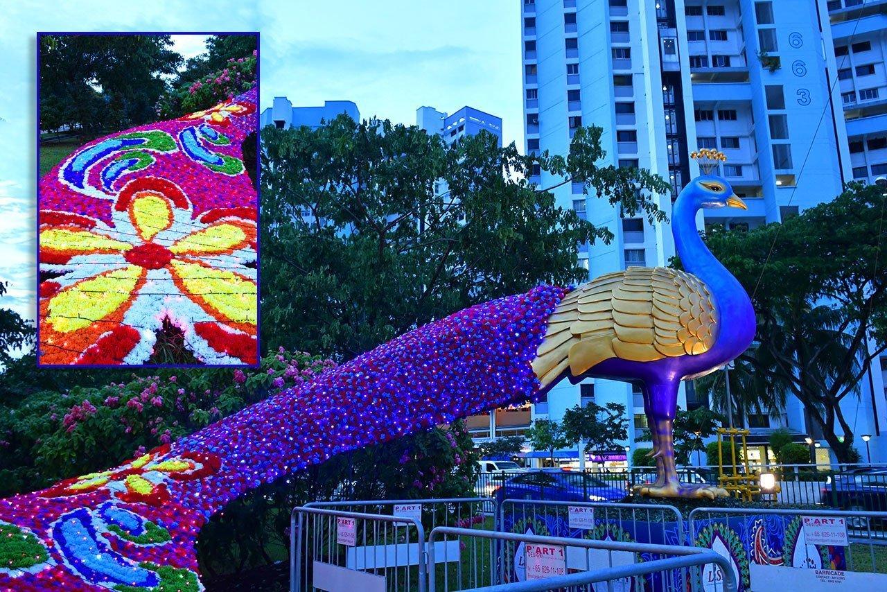 Little India Deepavali Peacock 2018