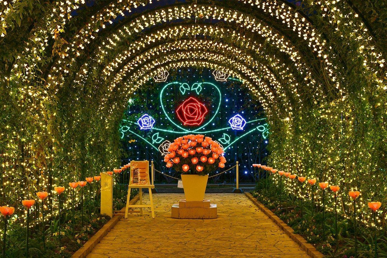 Ashikaga Flower Park Tunnel of Love.